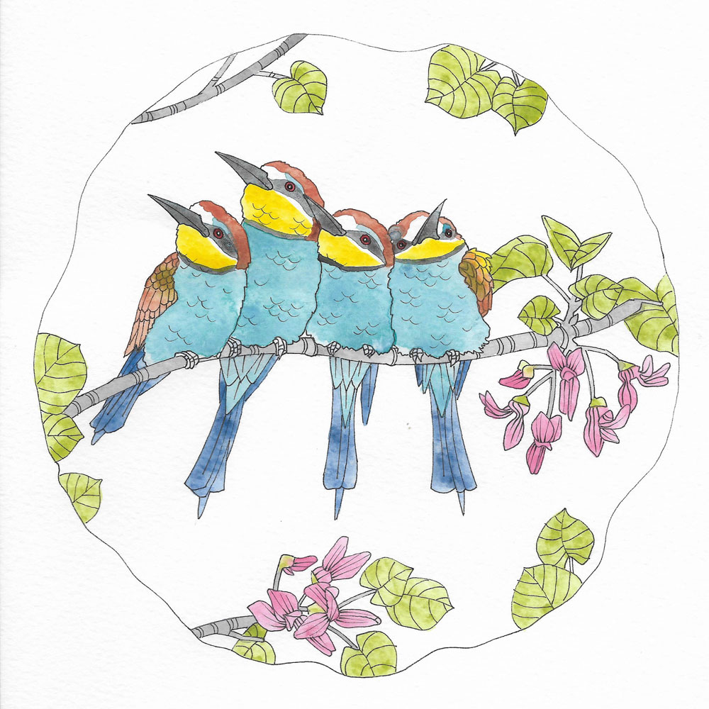 Bee Eaters & Judas Tree - Tiffany Scull
