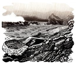 Robin Mackenzie - The life of a Wood Engraver